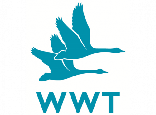 WWT joins the WSBF
